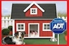 http://theartoflivingbetter.com/business/161:why-you-need-a-home-security-system.html